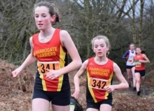 Harrogate Harriers to Host FRA Juniors Championship Fell Race!