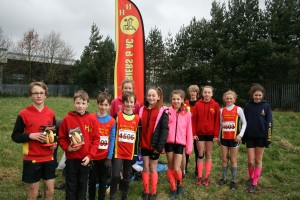 Harrogate at Relays